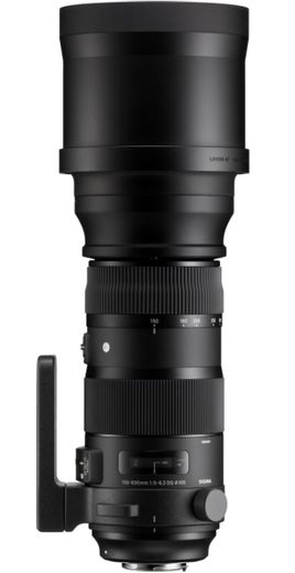 Sigma 150-600mm f/5-6.3 DG OS HSM Sport, Canon